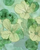 Mint Progeny IV Fine Art Print