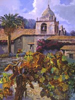 Vineyard at San Miguel Fine Art Print