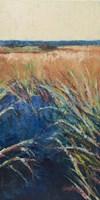 Pastel Wetlands II Framed Print