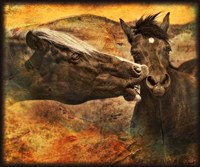 Kissing Horses I Fine Art Print