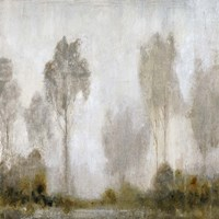 Misty Marsh I Fine Art Print