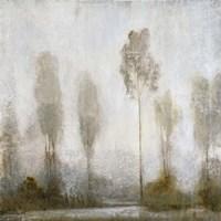 Misty Marsh II Fine Art Print