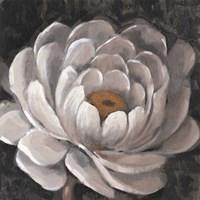 Neutral Fleur II Framed Print
