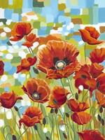 Vivid Poppies I Fine Art Print