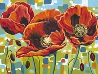 Vivid Poppies III Fine Art Print