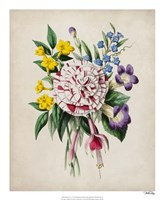 Spring Posy IV Fine Art Print