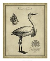 "Antiquarian Egret by Vision Studio - 18"" x 22"" - $27.99"