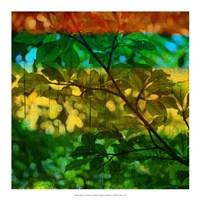 "Abstract Leaf Study I by Sisa Jasper - 18"" x 18"""