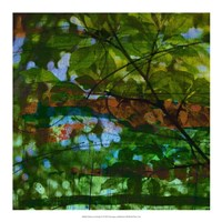 "Abstract Leaf Study IV by Sisa Jasper - 18"" x 18"""