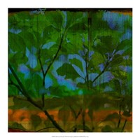 "Abstract Leaf Study V by Sisa Jasper - 18"" x 18"""