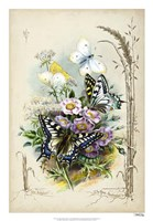 """Victorian Butterfly Garden V by Vision Studio - 18"""" x 26"""""""