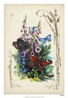 "Victorian Butterfly Garden VI by Vision Studio - 18"" x 26"""
