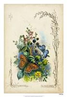 "Victorian Butterfly Garden VII by Vision Studio - 18"" x 26"""