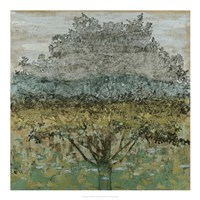 "Arbor Shadow I by Megan Meagher - 20"" x 20"" - $27.99"