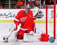 Jimmy Howard Hockey Goal Tending Fine Art Print