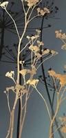 Twilight Botanicals II by Aimee Wilson - various sizes