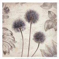 "Blushing Blue I - Mini by Aimee Wilson - 13"" x 13"""