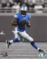 Reggie Bush 2013 Spotlight Action Fine Art Print