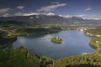 High angle view of a lake, Lake Bled, Julian Alps, Bled, Gorenjska, Slovenia Fine Art Print