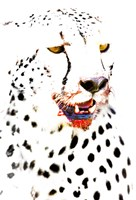 "Close-up of a Cheetah by Panoramic Images - 16"" x 24"""