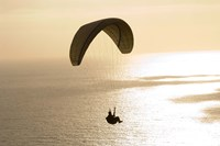 Silhouette of a paraglider flying over an ocean, Pacific Ocean, San Diego, California, USA Fine Art Print