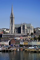 """Immigrant Embarkation Harbour, Terraced Houses and St Colman's Cathedral, Cobh, County Cork, Ireland (vertical) by Panoramic Images - 24"""" x 36"""""""