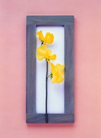 """Rectangular purple frame with yellow flowers on green stems in center on pink background by Panoramic Images - 26"""" x 36"""""""