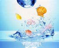 """Multicolored seashells and water bubbles in churning water by Panoramic Images - 24"""" x 20"""""""