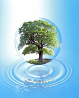 """A clear sphere with a full tree floats over a large water ring with reflection by Panoramic Images - 20"""" x 24"""""""