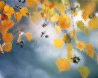 """Golden leaves hanging above water by Panoramic Images - 16"""" x 13"""""""