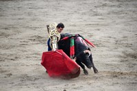 """Matador and Bull by Panoramic Images - 16"""" x 11"""", FulcrumGallery.com brand"""