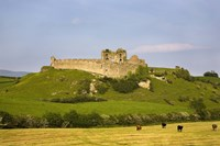 """The Ruined walls of Roche Castle, County Louth, Ireland by Panoramic Images - 16"""" x 11"""""""