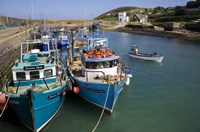 """Helvick Harbour, Ring Gaeltacht Region, County Waterford, Ireland by Panoramic Images - 24"""" x 16"""""""