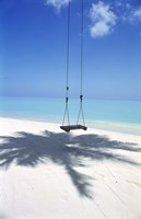 """Swing on the beach above palm tree shadow by Panoramic Images - 23"""" x 36"""""""