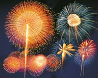 """Ignited fireworks by Panoramic Images - 24"""" x 19"""""""