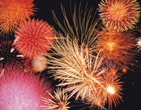 """Fireworks display by Panoramic Images - 24"""" x 19"""""""