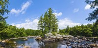 "Trees and rocks, Moose River, New York State by Panoramic Images - 36"" x 18"", FulcrumGallery.com brand"