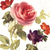 "Watercolor Floral IV by Danhui Nai - 18"" x 18"""