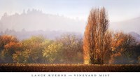 Vineyard Mist Fine Art Print