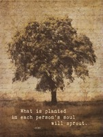 "What Is by Stephanie Marrott - 12"" x 16"""