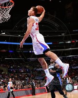 Blake Griffin 2013-14 basketball Action Fine Art Print