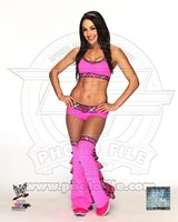Brie Bella 2013 Posed Fine Art Print