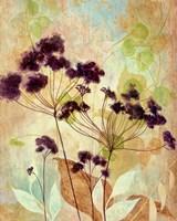 Plum Silhouette I Fine Art Print