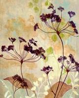 Plum Silhouetter Ii Fine Art Print