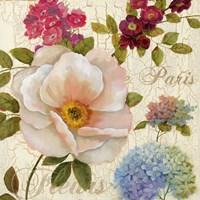 Paris Fleurs Fine Art Print