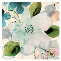Water Blossoms II Fine Art Print