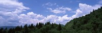 "Clouds over mountains, Cherokee, Blue Ridge Parkway, North Carolina, USA by Panoramic Images - 28"" x 9"""