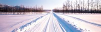 "Snowy Road Hokkaido Shari-cho Japan by Panoramic Images - 28"" x 9"""
