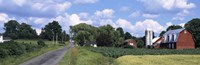 """Road passing through a farm, Emmons Road, Tompkins County, Finger Lakes Region, New York State, USA by Panoramic Images - 28"""" x 9"""""""