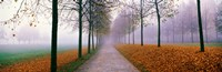 """Autumn in Schleissheim Bavaria Germany by Panoramic Images - 28"""" x 9"""""""
